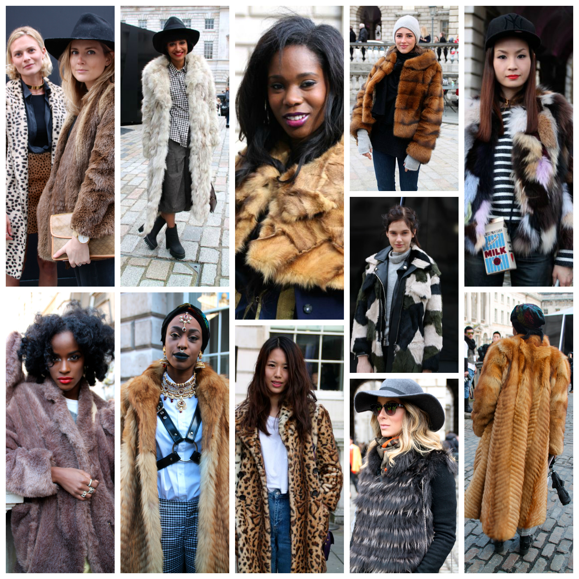fur 2 collage